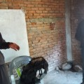 Masons Training at Nuwakot Nepal
